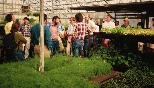 class in greenhouse