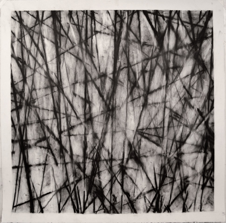 "Philip Vaughn; Skylight one; graphite on paper; 40"" x 40"""