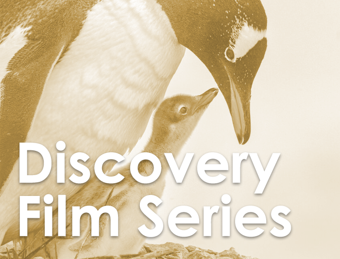 Discovery Film Series