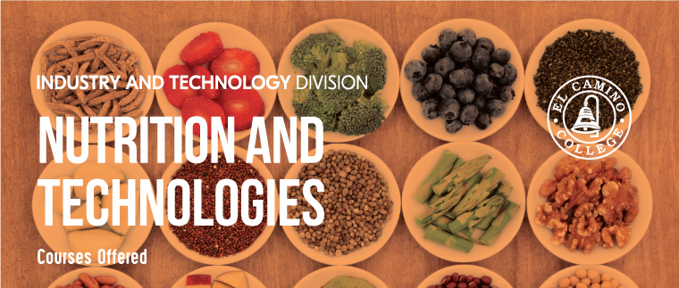 Nutrition and Foods Courses Offered Banner